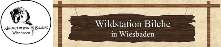 Wildstation_Bilche